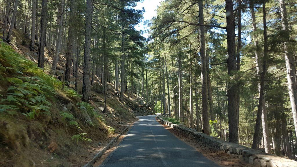 Strada che conduce al lago Melo