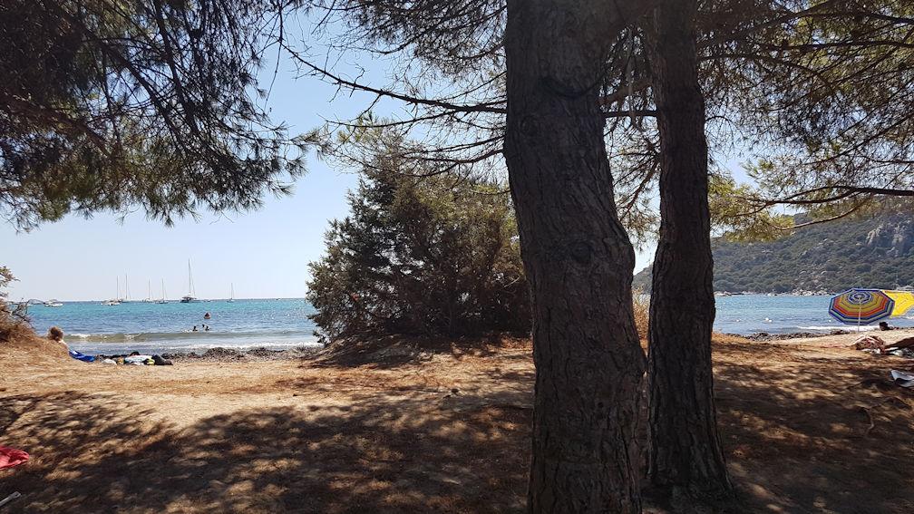 Santa Giulia, infestata dalle alghe